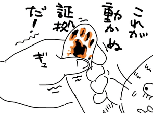 32_c.jpg